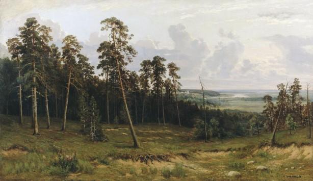 Margenes del bosque